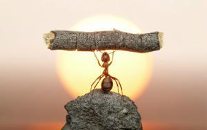 Трудности нас развивают. Когда нам трудно - мы развиваемся. Философия, философия, трудности нас развивают, добро и зло