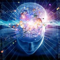 Развитие разума. Философия, разум, развитие человека, ответственность, опыт